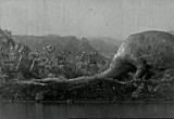 Still frame from: Lost World, A
