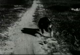 Still frame from: Heart, The