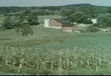 Still frame from: Grass: The Big Story