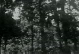 Still frame from: [Home Movies: Can 10482: Texas Trip, Bud & Virginia]