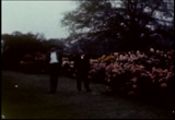 Still frame from: [Home Movies: African American Family, Detroit]