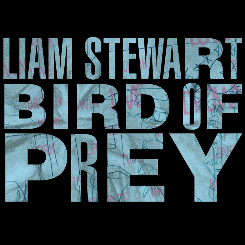 Cover of Liam Stewart's 'Bird Of Prey'