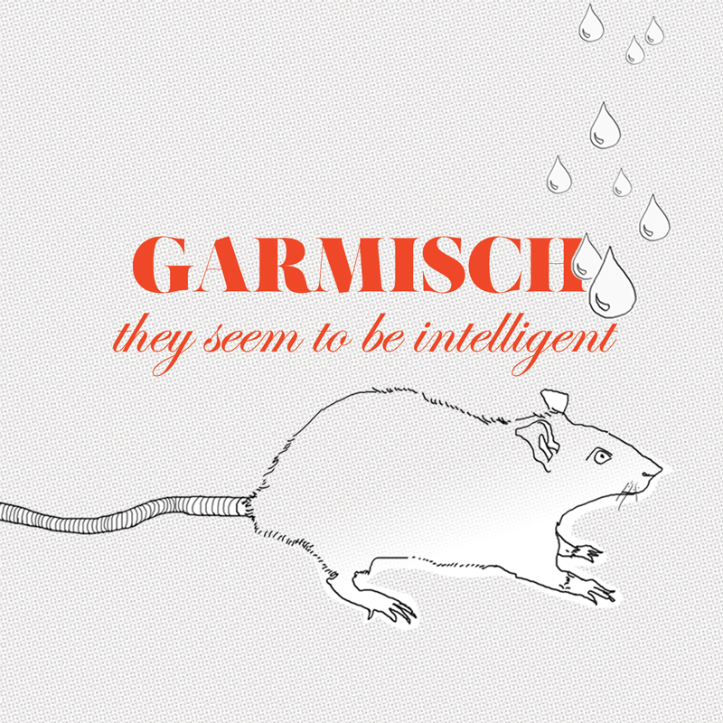 Cover of Garmisch 'They Seem To Be Intelligent'