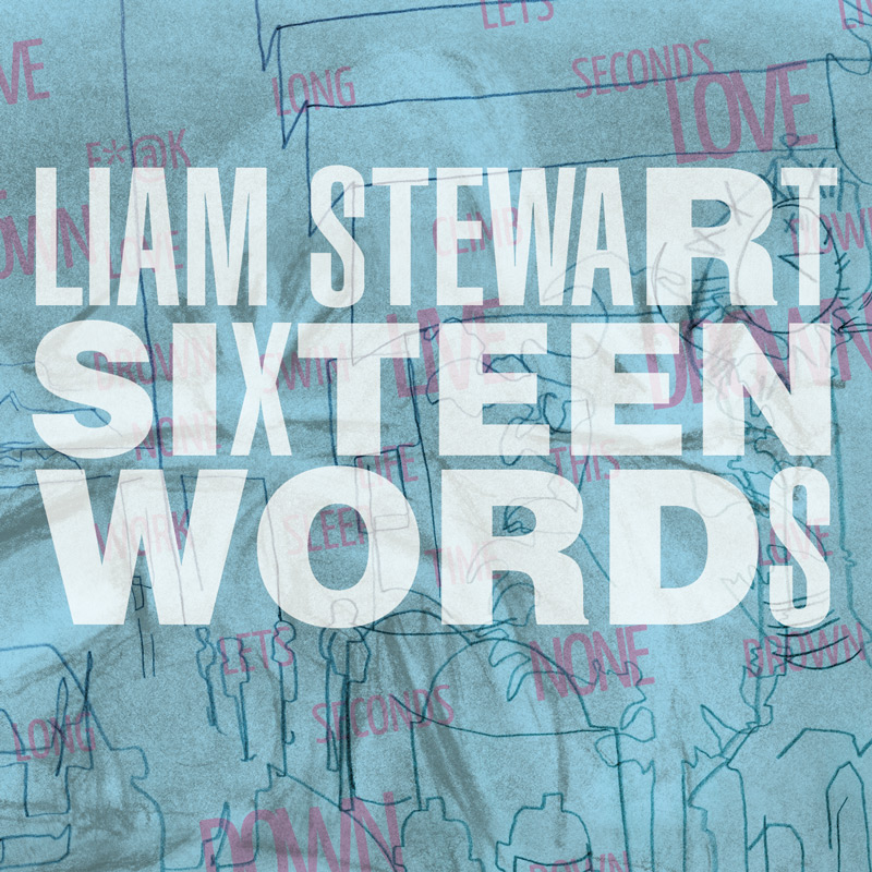 Cover of Liam Stewart's 'Sixteen Words'