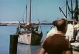 Still frame from: Beneath the 12-Mile Reef (1953) - Full Screen Version