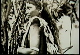 Still frame from: Borneo Exhibit V 320