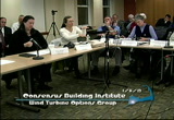 Still frame from: Consensus Building Institute - Wind Turbine Working Group January 8, 2013