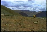 Still frame from: 'Everest' - Hi8mm transfer [part 2]