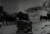 Still frame from: Death Valley Days - Sego Lillies