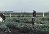 Still frame from: Farm Family In Spring