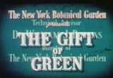 Still frame from: Gift of Green