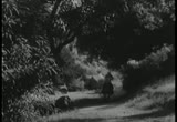 Still frame from: In Old Caliente (1939)