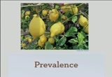 Still frame from: LEMON Drupal Diseases and Cures