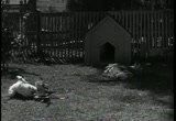 Still frame from: our gang silent Dog Heaven