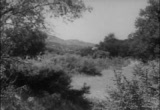 Still frame from: Paradise Canyon