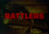 Still frame from: Rattlers - trailer