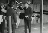 Still frame from: Silks and Saddles