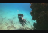 Still frame from: Sue Austin: Deep sea diving … in a wheelchair