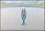 Still frame from: The Frog