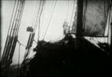 Still frame from: The Sea Lion