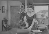 Still frame from: The Mickey Rooney Show  Misc 09