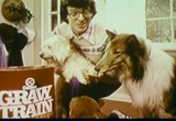 Still frame from: General Foods: Gravy Train Dog Food, 1970s (dmbb15426)