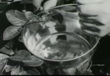 Still frame from: Post: Fruit in the Box Cereals, 1960s (dmbb33858)