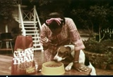 Still frame from: General Foods: Gravy Train Dog Food, 1970s (dmbb40202)