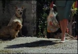 Still frame from: Frolic Dog Food, 1980s (dmbbvt00606)