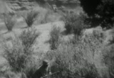 Still frame from: NEGRO CAVALRY REGIMENT, CAMP LOCKET, CALIFORNIA, ca. 1941 - ca. 1945