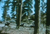 Still frame from: Northwest Trail