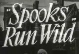 Still frame from: 'SPOOKS RUN WILD' movie trailer (1941)