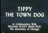 Still frame from: Tippy, Our Town Dog