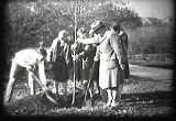 Still frame from: Trees, Planting and Care of