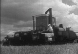 Still frame from: Wheat Farmer, The