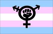 Risultati immagini per transfeminist flag