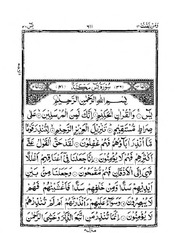Surah Yaseen - 13 page quran : Free Download, Borrow, and Streaming