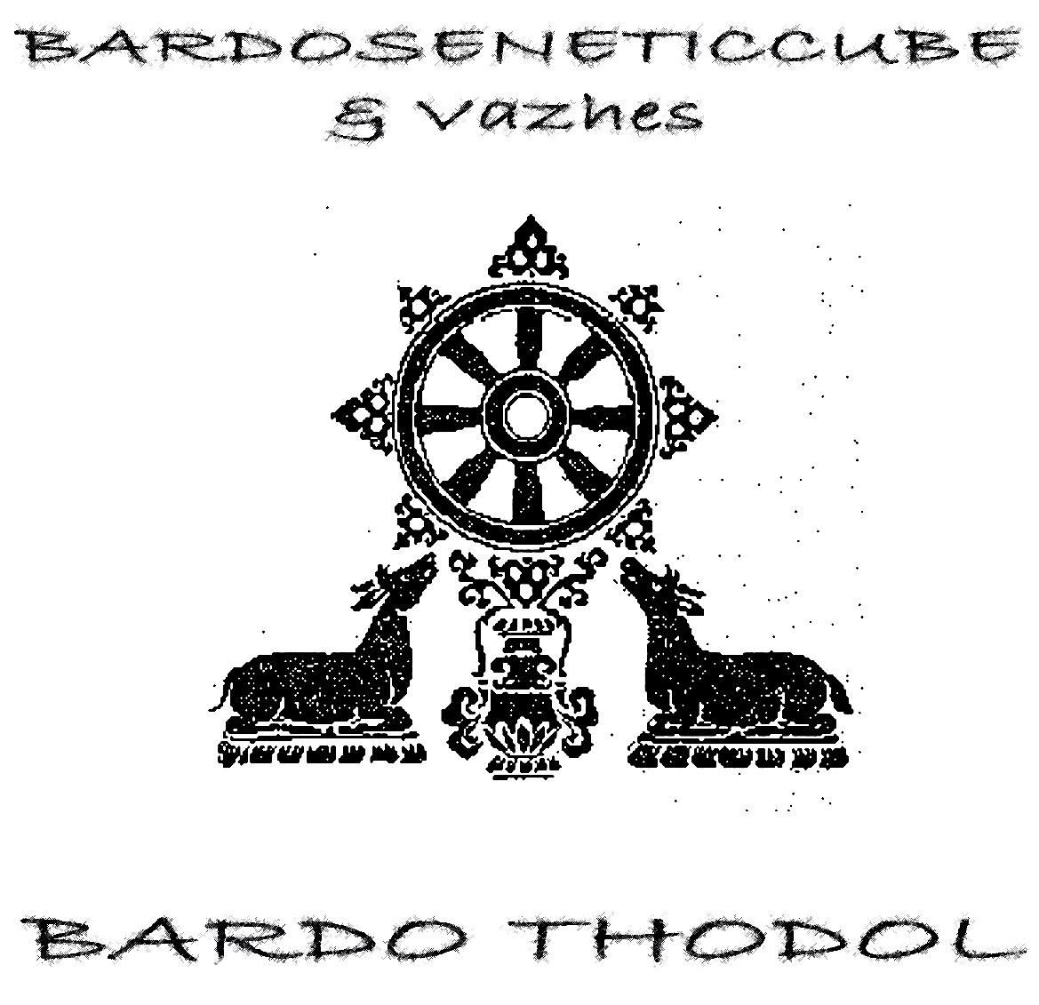 bardoseneticcube  u0026 vazhes