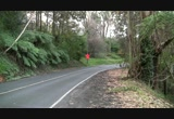 Still frame from: Boring Stock Footage of road in Mount Dandenong (5)