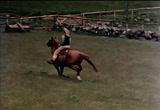 PAUL McCARTNEY Three legs (1971)