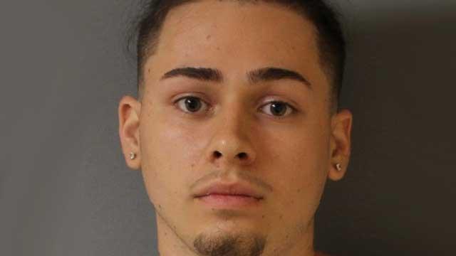 Seneca Falls man accused of choking dog