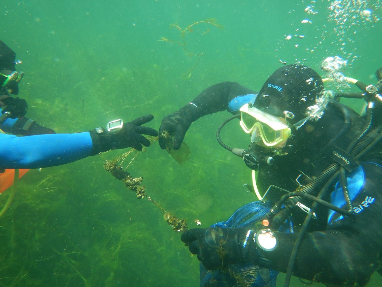 GALLERY: Volunteers dive to cleanup the marina in Watkins Glen as summer ends