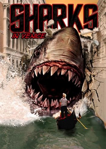 shark in venice