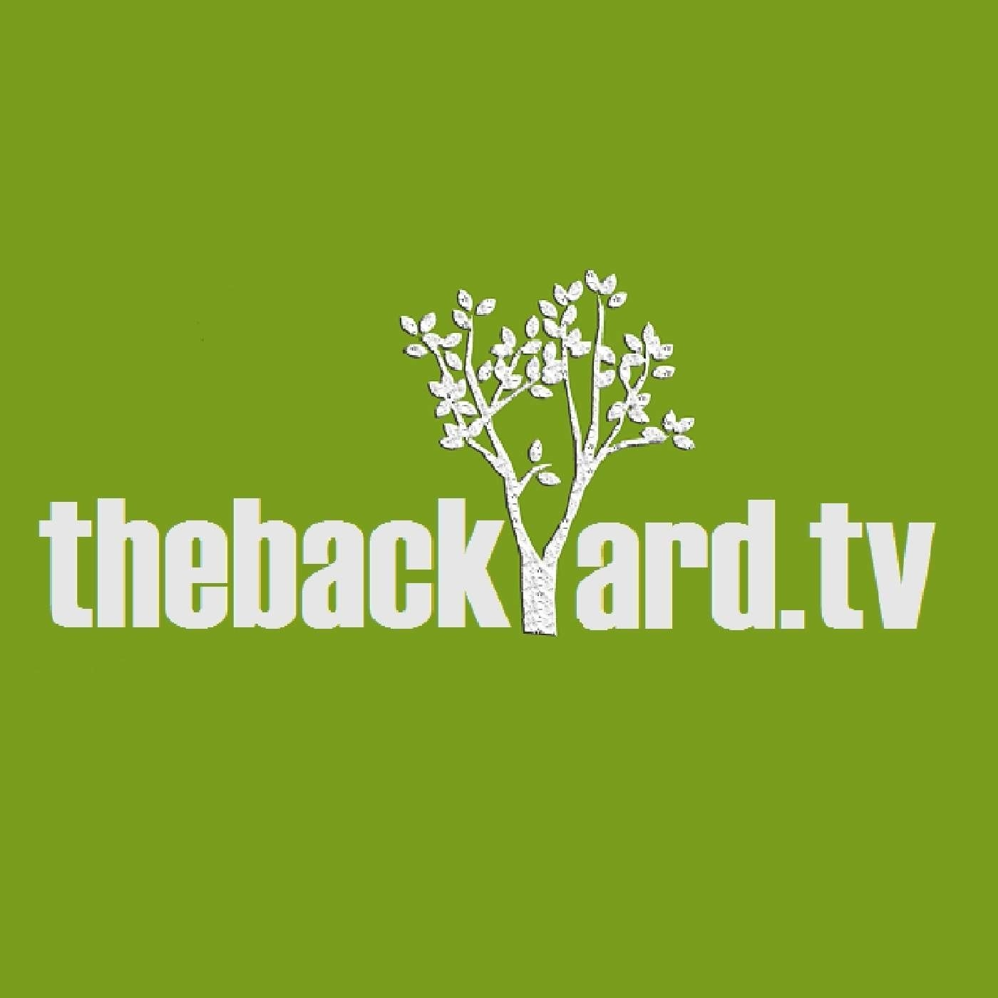 thebackyard.tv