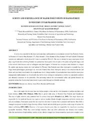 download dynamics of gambling: origins of randomness in mechanical