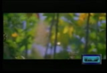 Download tamil cut video songs for whatsapp status