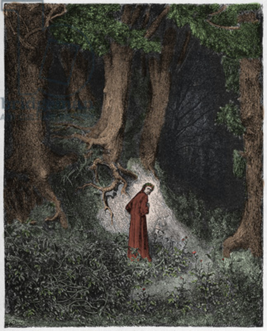 Dante The Divine Comedy Inferno Canto 1 Dante S Ghost Free Download Borrow And Streaming Internet Archive