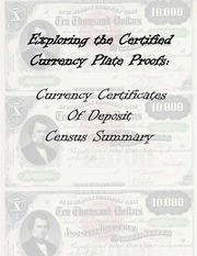 Currency Certificates of Deposit Summary
