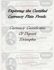 Currency Certificates of Deposit Examples