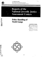 youth gang assessment Proper assessment of risk and protective factors for youth and gang involvement  helps to inform the development and implementation of prevention and.